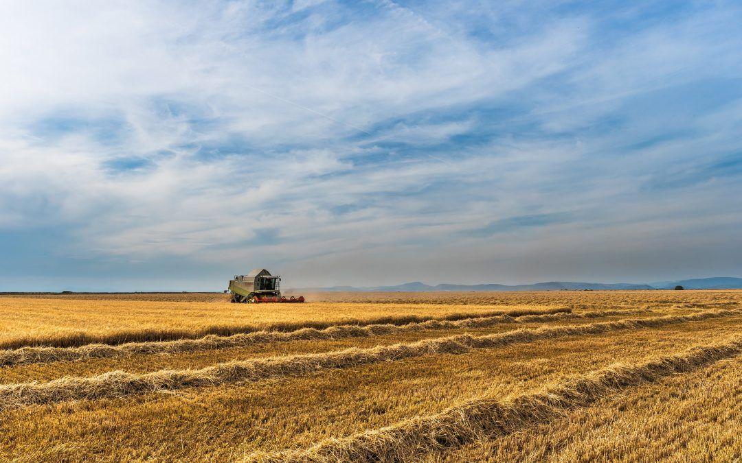 100 tysięcy dla Młodego Rolnika!!! Nabór rusza już 27 kwietnia.