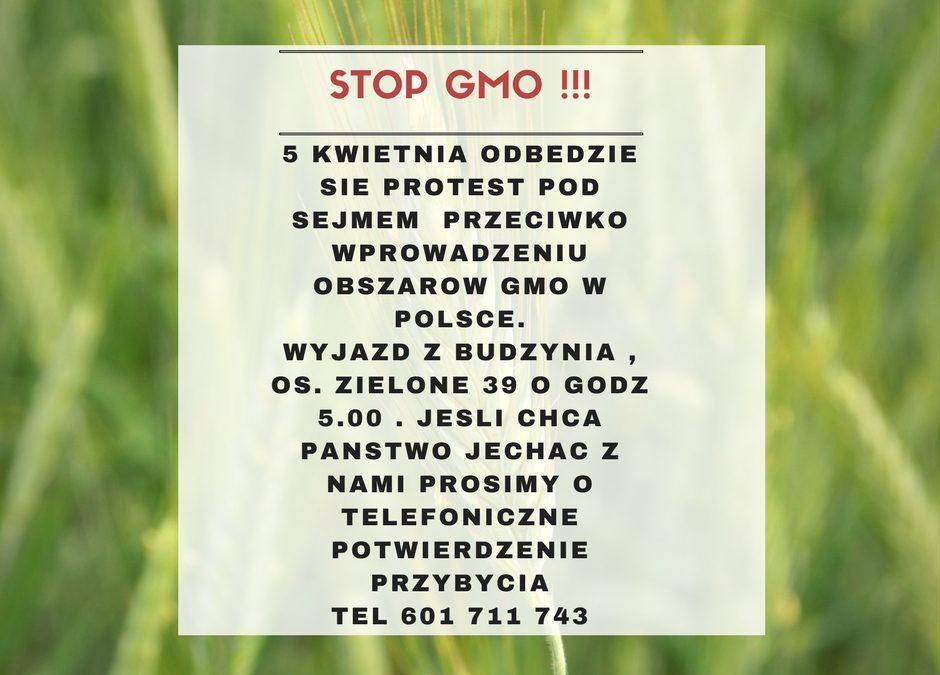 Protest przeciwko GMO !!!